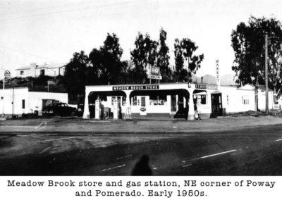 Meadow-Brook-Store