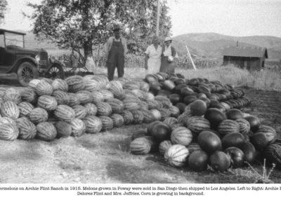 Flint-watermelons